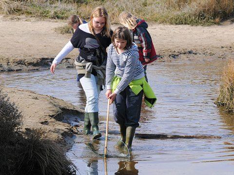 Kinderen vissen met duwnetjes tijdens Slufterexcursie