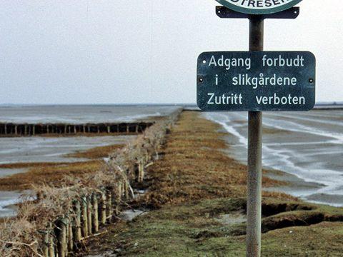 Kustverdediging op Mandø, foto van Kees Kuip