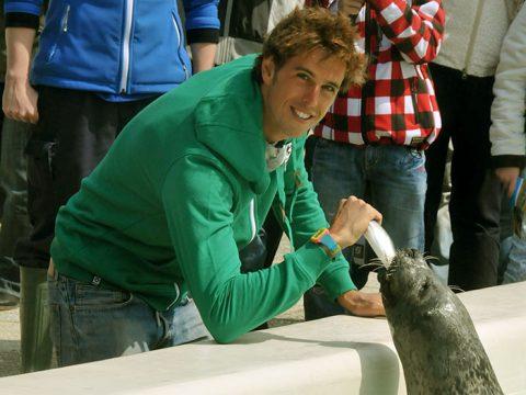 Dorian van Rijsselberghe voert zeehond