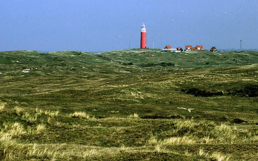 Eierlandse Duinen (© Ecomare)