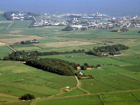 Oude polders bij Oudeschild