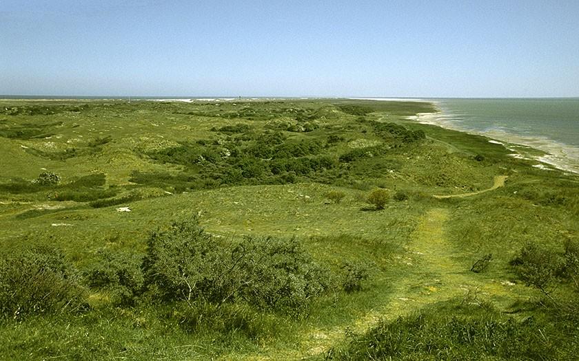 Oerd, natuurgebied op Ameland (Foto www.fotofitis.nl)