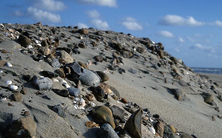Opgespoten zand met veel stenen van de zeebodem. Foto: Foto Fitis