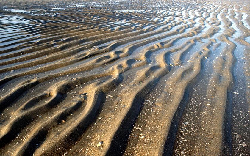 Ribbels in het zand, in de getijdenzone. Foto: Foto Fitis