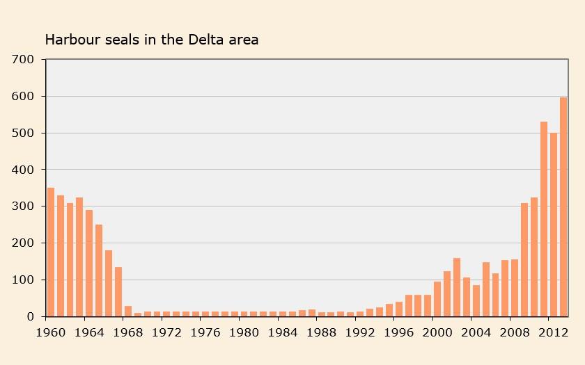 Graph harbour seal in delta region (© Ecomare)