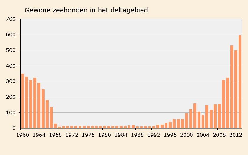 Grafiek aantal gewone zeehonden in het deltagebied (© Ecomare)