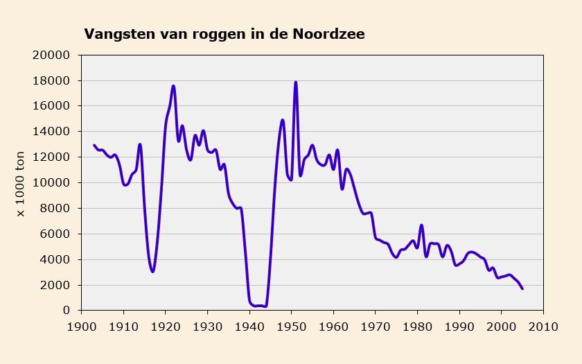 Grafiek roggenvangsten in de Noordzee (© Ecomare)