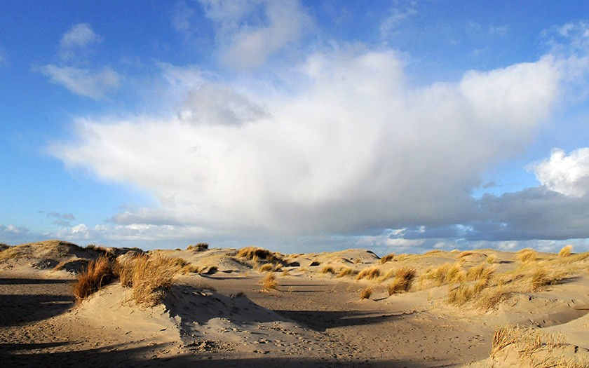 Dunes on the Hors
