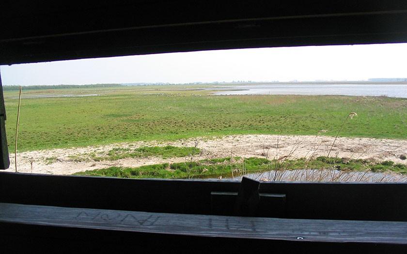 Vogelkijkhut bij Lauwersmeer