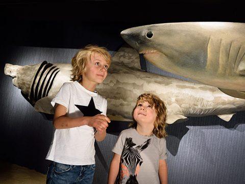 Kinderen in de expositie Naar de Haaien