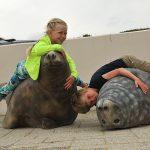 Kinderen liggen op zeehondenmodellen bij Ecomare