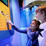 Moeder en kind spelen electro in de walviszaal bij Ecomare