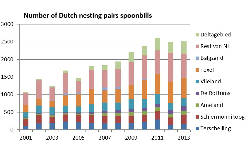 Number of nesting pairs of spoonbills in NL 2001-2013 (© SOVON)
