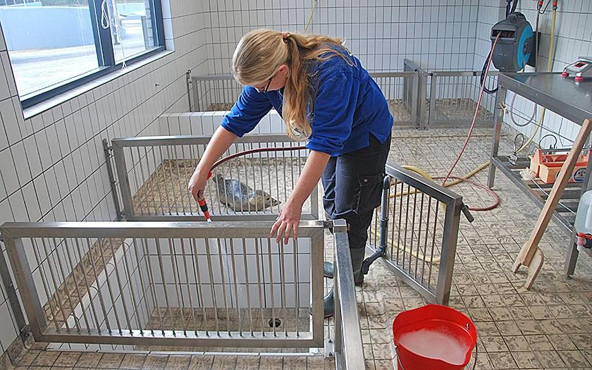 Nikky maakt bassin van zeehond Sofie schoon