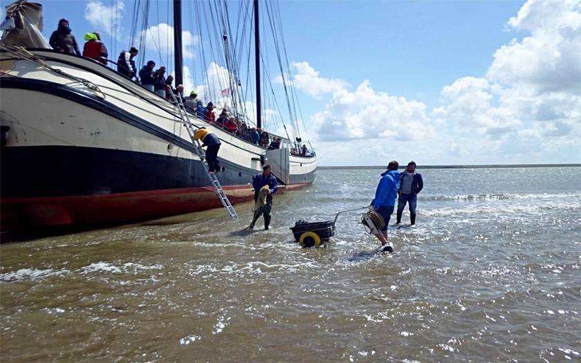 Cursisten klimmen van de boot het wad op