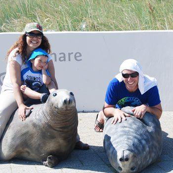 Bezoek bij zeehondenmodellen