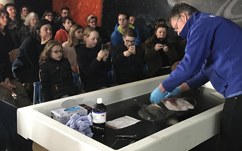 Pierre snijdt vis in demonstratie