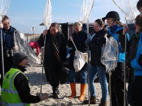 Dierverzorgers luisteren naar instructie op strand