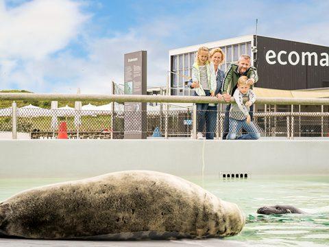 Familie met kinderen tijdens activiteiten in de vakantie bij Ecomare op Texel