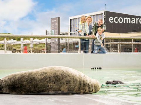 Openingstijden voor Ecomare Texel