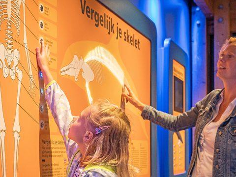 Tentoonstellingen bij Ecomare op Texel