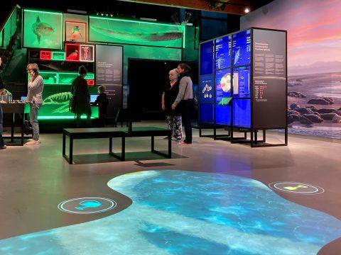 Overzicht-tentoonstelling Wonderlijk Wad-met bezoek